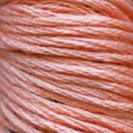 Вышивальное хлопковое мулине № 352