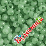 Бисер под вышивку Preciosa 5 грамм № 02163